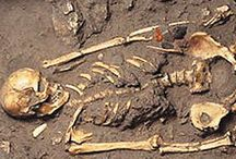 THE TOMB OF AMPHIPOLIS-THE DEAD / INFORMATION ABOUT THE SKELETON OF THE DEAD http://www.thetombofamphipolis.com/the-dead/