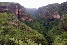 Pachmarhi hill station - Madhya Pradesh state - India Country - Asia continent / Places to visit in the mentioned place..  Do drop by and check out all my boards :)..