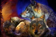 spirit of the wolves / by Maria Spencer