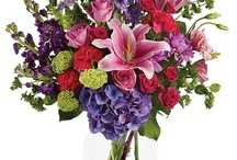 Mother's Day / At Bice's Florist, we compete strongly with the finest designers, retailers and service providers around the world in the areas of design, service and presentation. We strive to provide our customers with the highest standard of quality in product, design, service and presentation while never forgetting value.