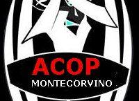 ACOP MONTECORVINO 2002 / Società Sportiva