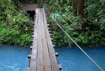 Bridges Made For Walking
