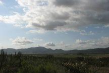 Valle de Guadalupe Baja California Mexico / Expresiones en el Valle de Guadalupe. Un encuentro ideal.