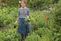 aly's garden
