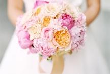Bouquets  / by Fathia Ghaleb