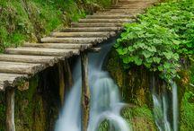 Photo Natura
