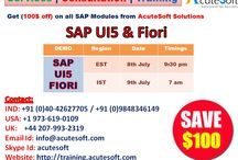 Get $100 off for SAP UI5 and SAP Fiori Online Training from Acutesoft / Get 100$ off on SAP UI5 and SAP Fiori from Acutesoft Solutions. AcuteSoft offers top Quality & Cost-Effective Online Training with Real Scenarios. We have excellent Instructor having Real-time experience orientation in Online Training. We provide Subject matter expert (SME) who are good experience in Testing Platform. We offer training services to major IT Executives and individuals throughout the world.  We have certified and highly qualified instructors from all over the globe.