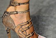 Top shelf shoes