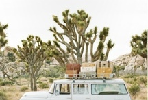 Road Trips / Roll down your windows, cue up the playlists and hit the highway on one of these highly-recommended road trip ideas.  / by Luvo