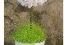 fiori / fiori che non appassiscono