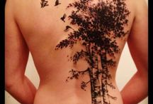 Tree tattoo ideas / by Carrie Hutchings