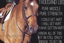 Horses / Gorgeous