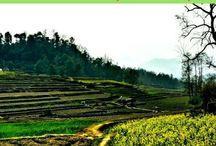 Nepal & Bhutan / Inspiraatiota ja matkavinkkejä Nepaliin ja Bhutaniin