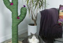 Kocici skrabadla