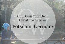 Weihnachten in Potsdam