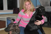 Who's Who at Love My Doggy Day Care / Meet our Dog-Loving Caregivers