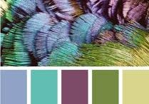 Colour Boards / by Hailey Clayton