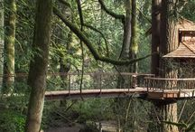 treehouses / living in a fairytale