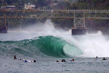SURF & DIE / by Emiliano Frezza