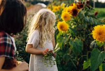 Summer...Flower...Feeling...