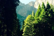 All Things National Parks