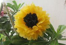 flores reciclaje