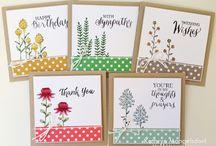 Flowering fields cards