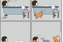 Funny / by Megan Sturgeon