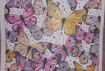 Omalovánky- butterflies