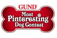 GUND Most Pinteresting Dog Contest / Pin a Pic of your Pup to your Pinterest Page for your chance to win $250 of huggable GUND plush!