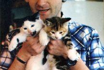 Día Mundial de los animales: Músicos con sus gatos / El 4 de octubre se celebra el día mundial de los animales. La Mediateca ha seleccionado una serie de fotos de algunos de nuestros músicos más conocidos que han posado con su mascota felina