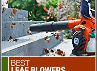 Expert Recommendations / Best-Selling and Top Rated leaf blowers.