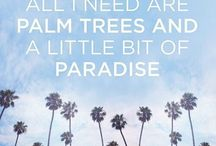 I wanna be where the palm trees be / by Nicole Shirey