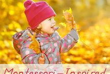 montessori fall / Activities
