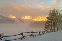 Ski + Snowboard Resorts