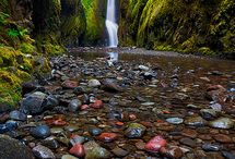 oregon / by Holly Doughty