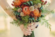 Mary Leigh's Autumn Wedding  / by Amy Robinson Martin