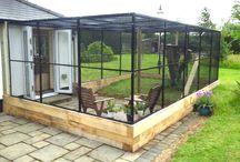 Cat Secure Garden