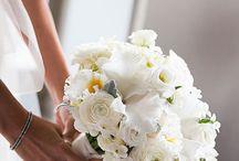 Nunta in alb/White Weddings
