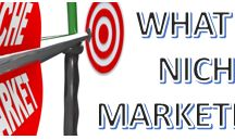 NICHE MARKETING / ALL BLOGS AND VIDEOS ON NICHE MARKETING TO HELP OTHERS UNDERSTAND THEIR BUSINESS TO GROW FURTHER....