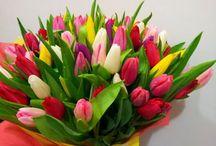 поздравления цветы