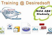 seo services / we are providing seo services in delhi and ncr.