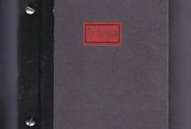 Travel's sketchbook- ToyLand