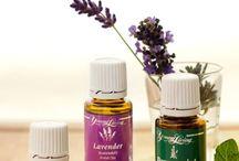 Essential Oils / Essential oils, essential oils remedies, natural health, essential oil recipes