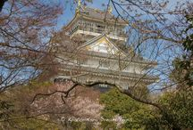 Gifu Castle During the 2016 Sakura Season. / The current version of Gifu Castle is a cement structure that was built in the 1950s, as the previous castle had been destroyed by the fire bombings of the surrounding city during World War II. On the top floor of the castle, an observation deck, you can enjoy a 360-degree panoramic view of the surrounding area, including the Nagara River and Nagoya.
