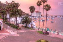 Catalina Sights to See