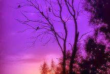 Sunset,sunrise,moon
