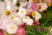 flowers / by TJL