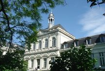 Le campus universitaire