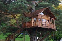 Screenshots / Casa na Árvore e edícula.